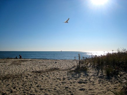 South Chatham Cape Cod vacation rental - Walk to Forest Beach just 1/2 mile away