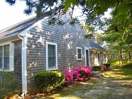 South Chatham Cape Cod vacation rental - Spring Flowers East Side