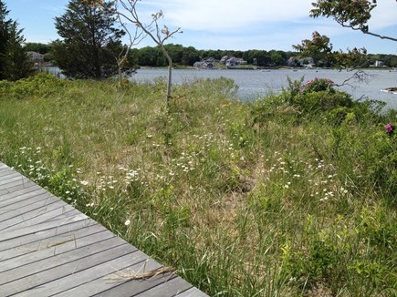 West Dennis Cape Cod vacation rental - Bass River Park