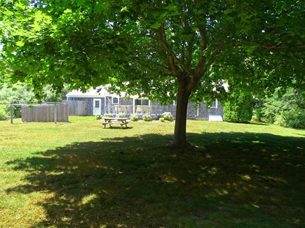 Orleans Cape Cod vacation rental - Large back yard, great for games, partial shade