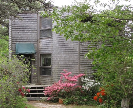 Truro Cape Cod vacation rental - Stairs to front door, Spring is in the air!