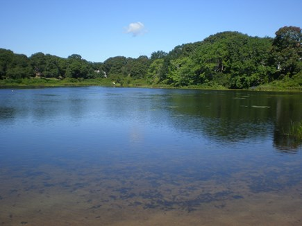 Eastham Cape Cod vacation rental - The pond is a few short steps away and has a sandy beach.