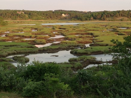 Truro Cape Cod vacation rental - Low tide on the Pamet, have you seen the Osprey nest yet?