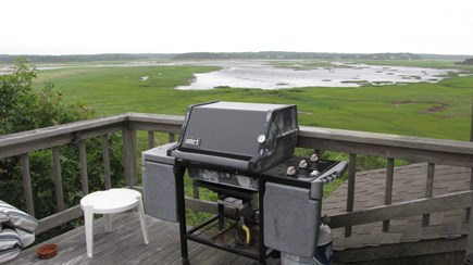 Wellfleet Cape Cod vacation rental - Grilling with views; great birding too!