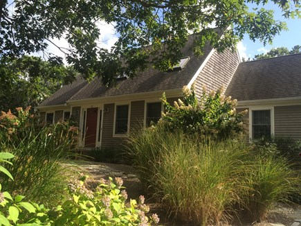 Truro Cape Cod vacation rental - Love the grasses!