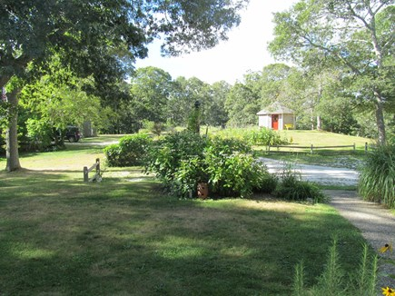 Orleans Cape Cod vacation rental - Front Yard looking out from house