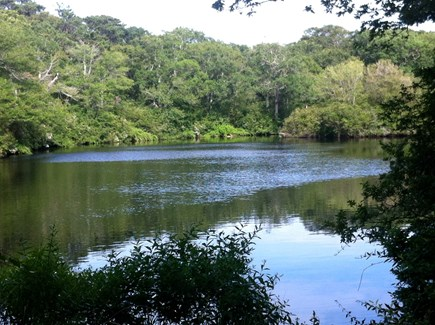 West Yarmouth Cape Cod vacation rental - Interior ponds provide good fishing