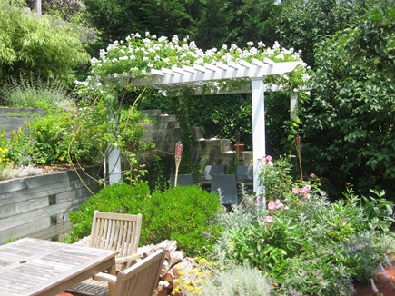 Provincetown Cape Cod vacation rental - Pergola with White Rose Vines