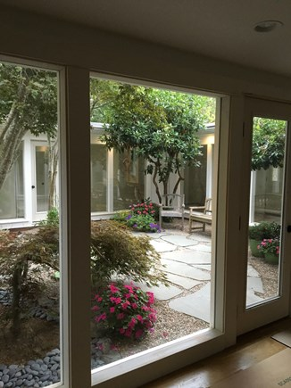 Chatham Cape Cod vacation rental - Peek of interior garden inside The Atrium House