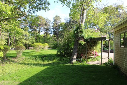 Chatham Cape Cod vacation rental - New lawn and shrubs in yard