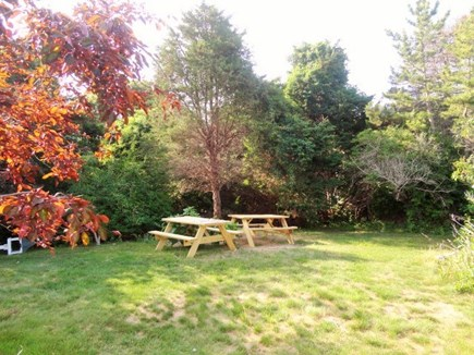West Yarmouth Cape Cod vacation rental - Plenty of room for the kids to play