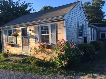 Falmouth Cape Cod vacation rental - Charming one bedroom+ cottage near beach and town