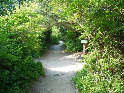Brewster Cape Cod vacation rental - Shady stroll through adjacent conservation land to the beach