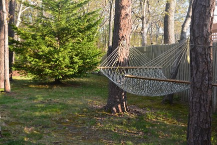 Orleans Cape Cod vacation rental - Hammock for two in shady spot.