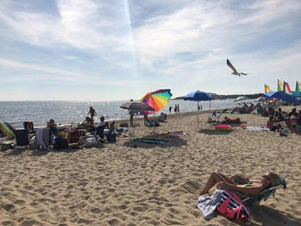 Chatham ,Ridgevale beach Cape Cod vacation rental - Walk to beautiful Ridgevale Beach just 4/10 mile away