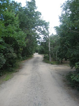 Eastham Cape Cod vacation rental - Our quiet dirt road