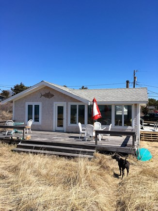 Wellfleet Cape Cod vacation rental - Cottage at Indian Neck #3 is animal friendly