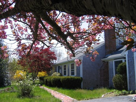 Brewster Cape Cod vacation rental - Welcome to Quail Hollow!