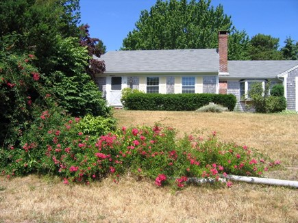 Brewster Cape Cod vacation rental - The house is located on a quiet cul de sac
