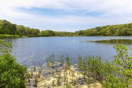 Barnstable, Osterville Cape Cod vacation rental - Water view of pond