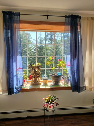 Centerville Cape Cod vacation rental - Southern Exposure bay window