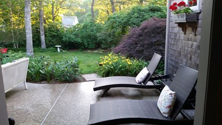 South Yarmouth Cape Cod vacation rental - Peaceful backyard for bird watching and relaxing.