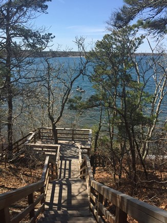 Brewster Cape Cod vacation rental - Long Pond