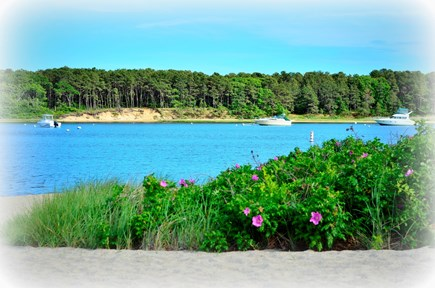 East Falmouth Cape Cod vacation rental - Washburn Island across the Eel River
