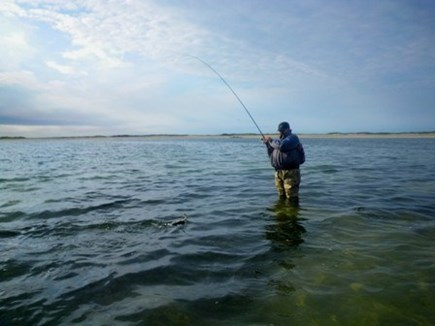 Chatham Cape Cod vacation rental - Fishing nearby
