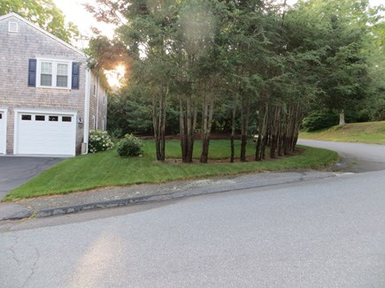 Barnstable, Centerville Cape Cod vacation rental - Side yard view.