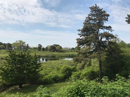 Chatham Cape Cod vacation rental - View of the kettle pond from the back of the house.