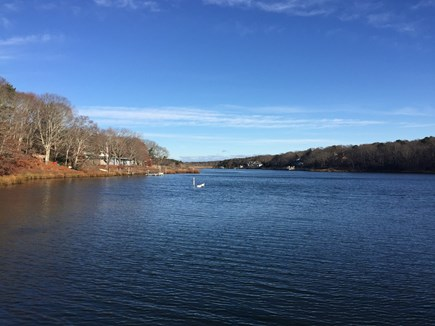 Falmouth Cape Cod vacation rental - View from dock