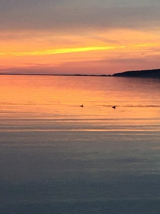 Wellfleet Cape Cod vacation rental - A different look every night