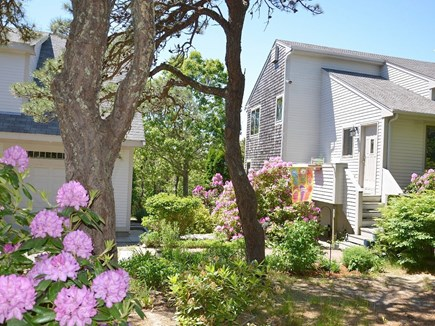 Truro Cape Cod vacation rental - Located on 2 1/2 acres on a very quiet street!