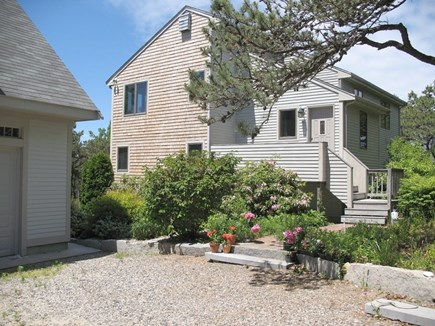 Truro Cape Cod vacation rental - Lots of rhododendrons!