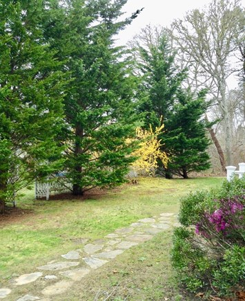 South Chatham Cape Cod vacation rental - Located on an extremely private lot
