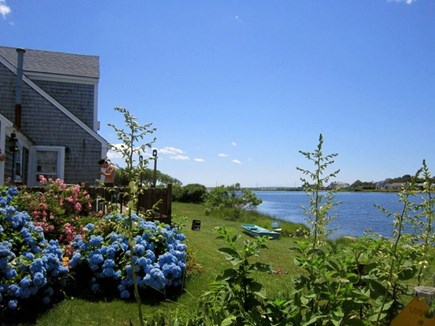 East Falmouth Cape Cod vacation rental - View of front yard and Little Pond. Enjoy a nice kayak ride!