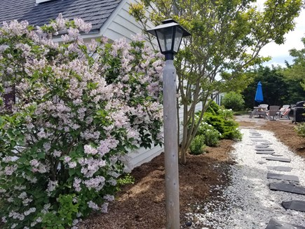 North Truro Cape Cod vacation rental - Shelled Walkway To Backyard
