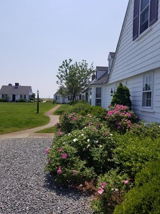 North Truro Cape Cod vacation rental - Front Yard and Walkway to the Beach