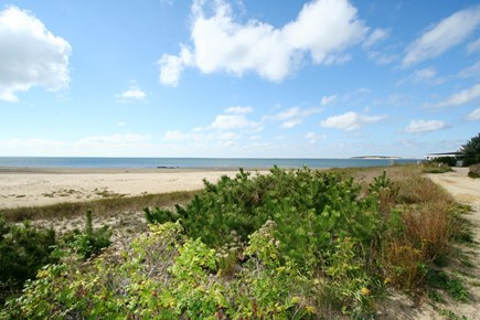 Wellfleet Cape Cod vacation rental - Beautiful beach just 2/10 mi. down a sandy lane from the house