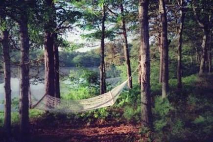 Brewster Cape Cod vacation rental - Backyard hammock
