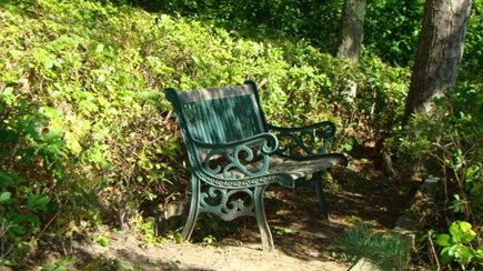 Brewster Cape Cod vacation rental - Backyard bench overlooking the pond.