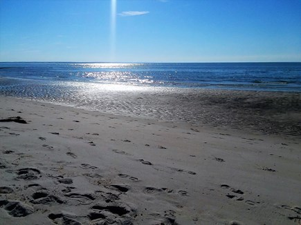 South Dennis Cape Cod vacation rental - Beautiful Mayflower Beach - 4 miles away.