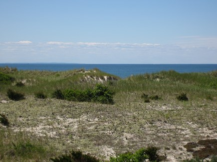 East Dennis Cape Cod vacation rental - And what a view it is!! (Close up)