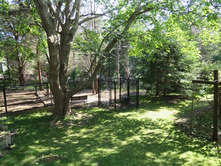 Eastham Cape Cod vacation rental - Dog park with 6 foot fence and double entry