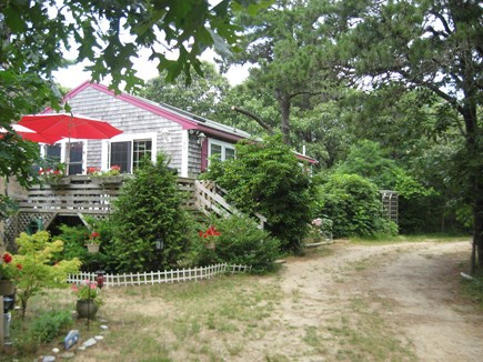 Eastham Cape Cod vacation rental - View of house nestled in woods