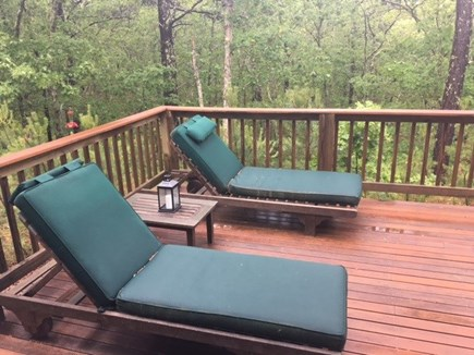 Wellfleet Cape Cod vacation rental - View of back porch overlooking trees