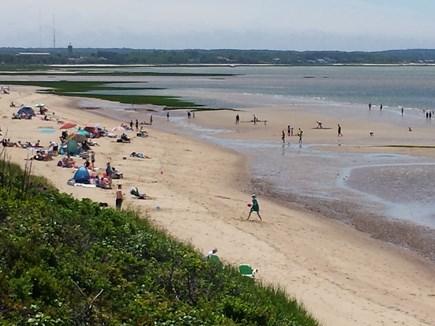 Eastham Cape Cod vacation rental - Fun at First Encounter Beach