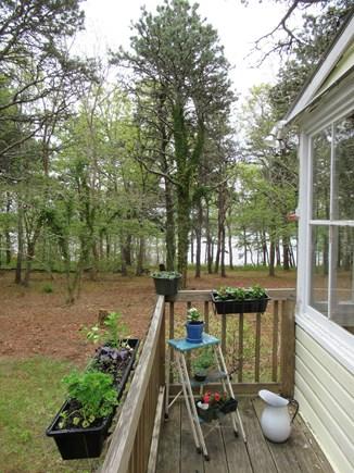 Wellfleet Cape Cod vacation rental - Side porch with herb garden