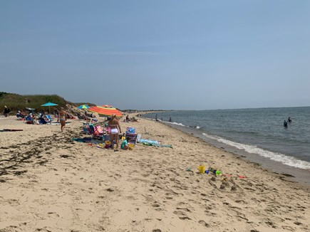 West Chatham in Hardings Beach Cape Cod vacation rental - Harding's Beach, July 2019. Warm water, no seals or sharks.